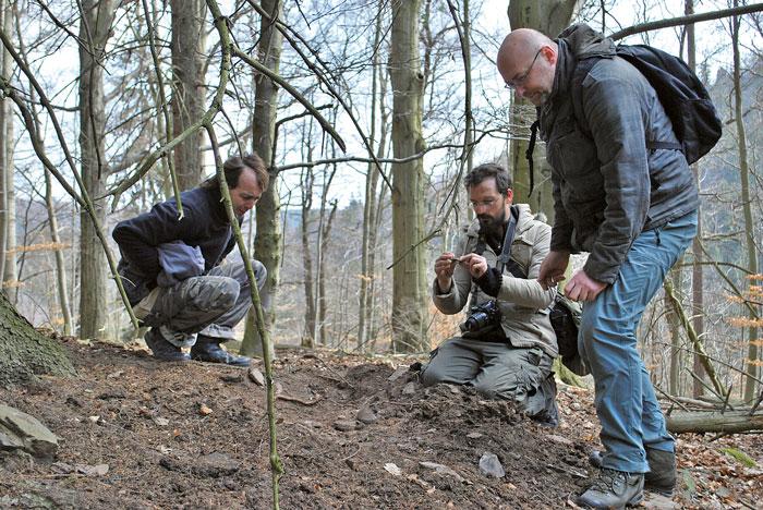 © LfA Sachsen, Mitglieder des ArchaeoMontan-Teams bei der Prospektion